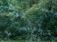 Seascapes 6 - Ellie Davies, Contemporary Photography, British Art, Landscapes