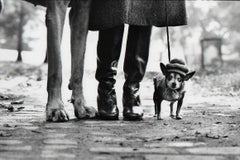 Dog Legs, New York City