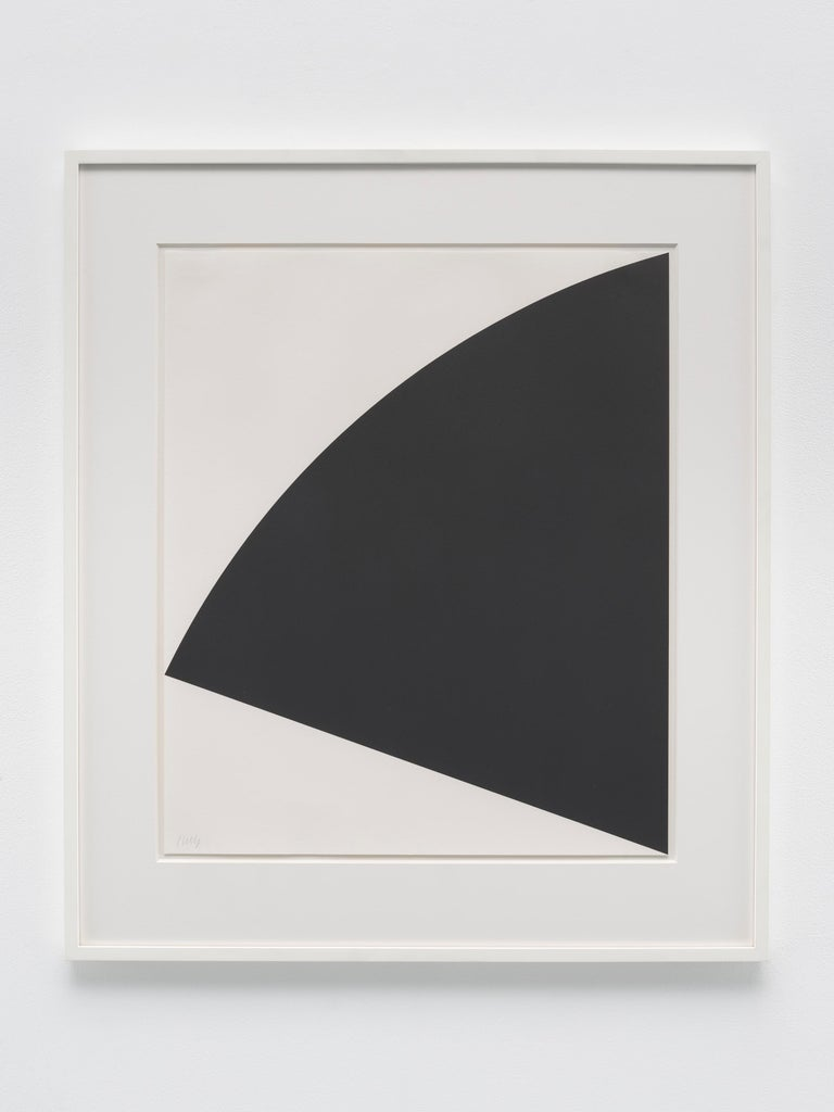 Lithograph on Rives BFK white paper Edition of 34 Signed and numbered in graphite (lower left recto) Frame: 29 x 25 1/8 inches; 74 x 64 cm   Available from Matthew Marks Gallery, New York and Los Angeles