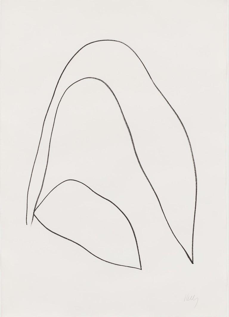 Ellsworth Kelly Still-Life Print - Leaves