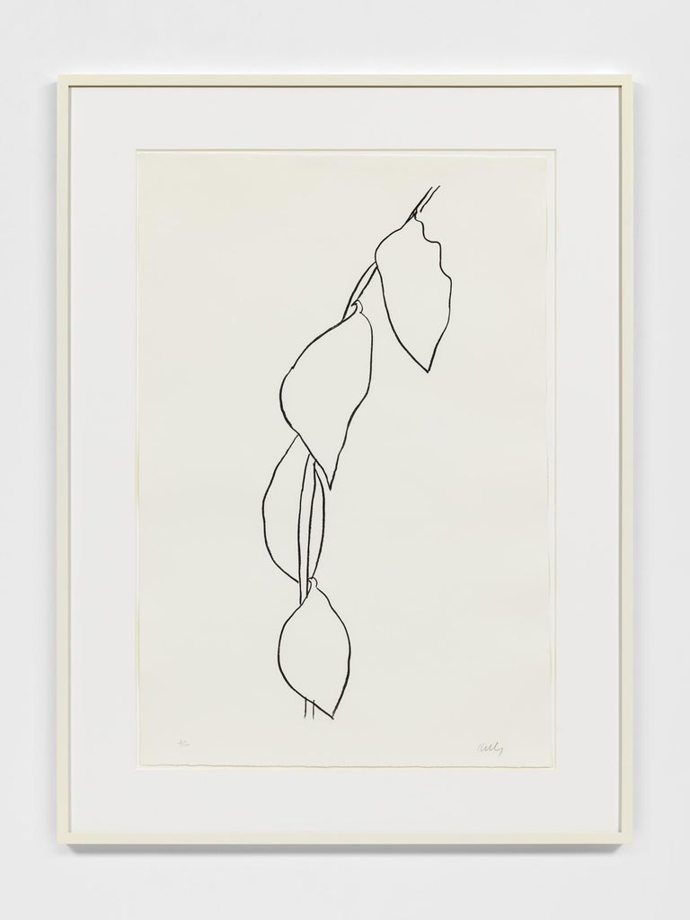 Printer: Imprimerie Arte, Paris Publisher: Maeght Éditeur, Paris Signed and numbered in pencil, lower margin   Though best known for his abstract and minimalist paintings and sculptures, Ellsworth Kelly (1923–2015) found inspiration for nearly all