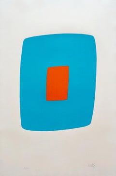 Light Blue With Orange VI.11