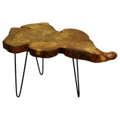 Elm Tree Live Edge Coffee Table with Hairpin Legs / LECT120