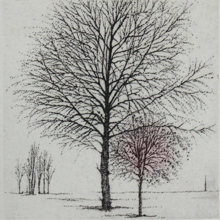 Elżbieta Bocianowska Figurative Print - Hope- XXI Century, Contemporary Landscape Etching, Nature, Trees