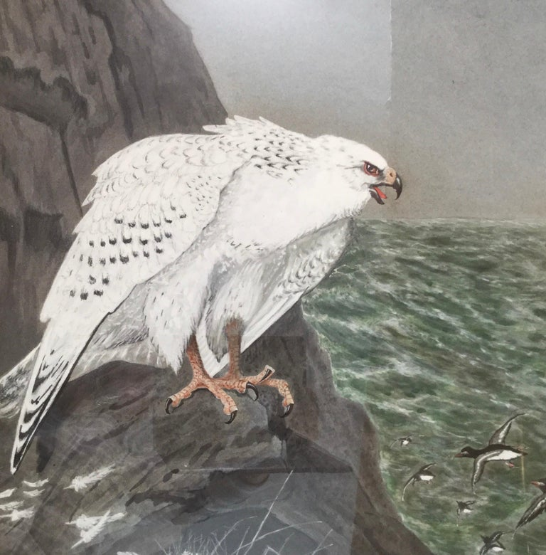 E.M.Haskel Gouache on Paper Painting of Gyr Hawk Bird In Excellent Condition For Sale In Lambertville, NJ