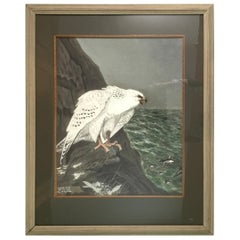 E.M.Haskel Gouache on Paper Painting of Gyr Hawk Bird