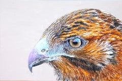 Synthetic Resin Animal Paintings