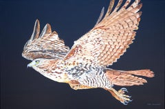 Red-Tailed Hawk at Night, Original Painting