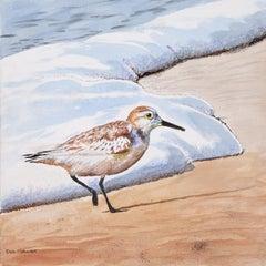 Sanderling #22, Original Painting