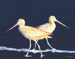 Two Godwits at Night, Original Painting