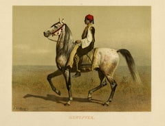 The Egyptian horse by Emil Volkers - Lithograph - 19th century