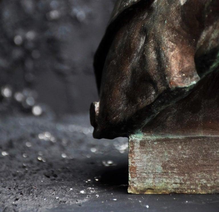 Emile Daviol Signed Bronze Bust For Sale 4