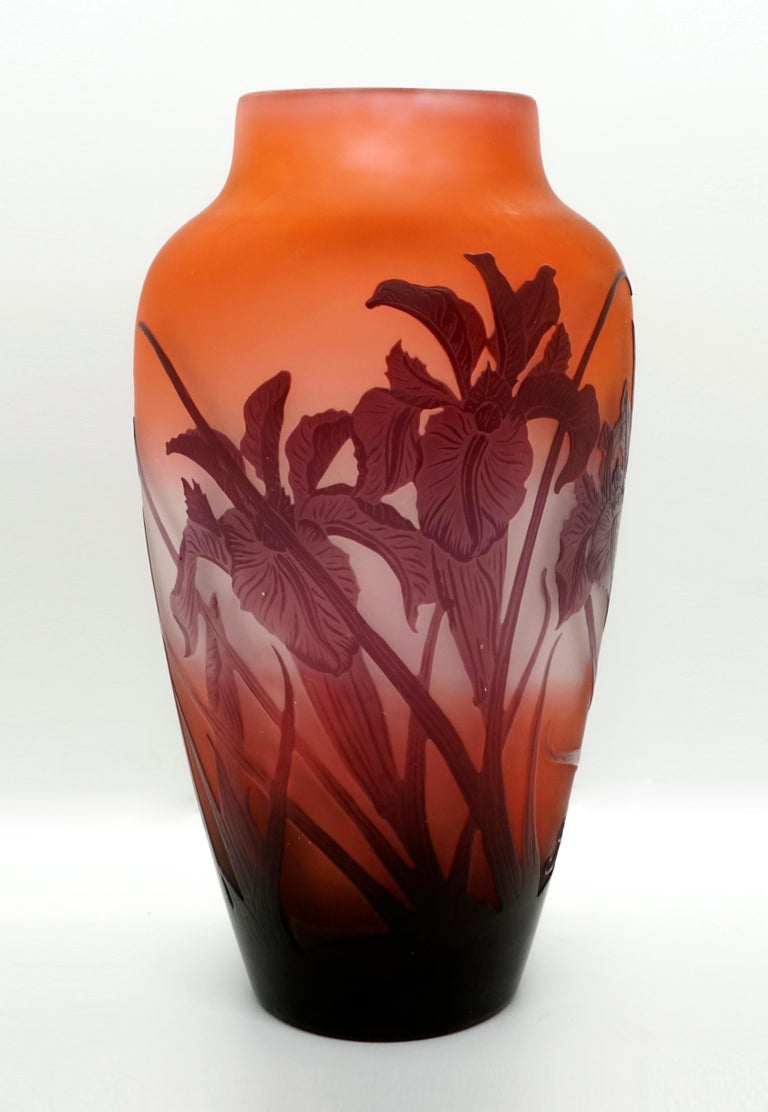 Flush foot, raised, bulbous body with a short, offset neck on gently sloping shoulders and a wide open mouth. The area close to the ground is completely covered in burgundy red, above it is etched decor with irises in burgundy against a milky