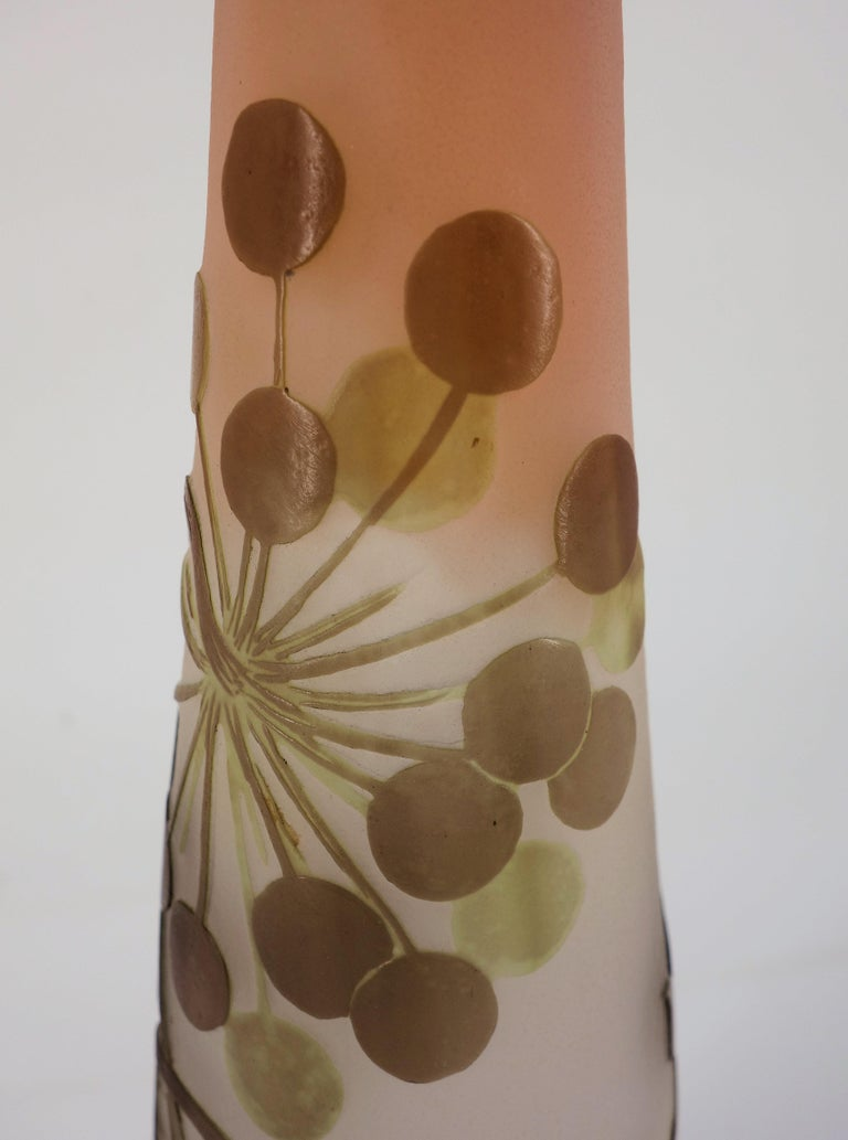 Art Nouveau French Cameo Glass 'Umbels Vase' by Emile Gallé, Nancy - 40 cm For Sale 3
