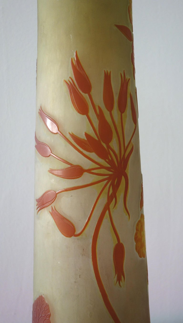 Art Nouveau French Cameo Glass 'Umbels Vase' by Emile Gallé, Nancy - 63cm High For Sale 5