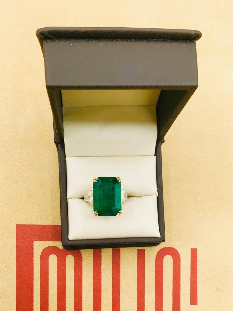 Emilio Jewelry 16.98 Carat Vivid Green Emerald Diamond Ring For Sale 14