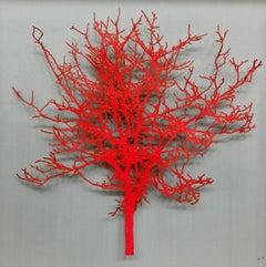 Felt Hawthorn - red tree lasercut mixed media glazed framed