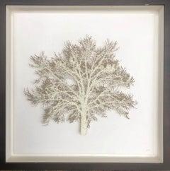 Pale Crystal Oak - lasercut paper swarovski crystals mixed media framed