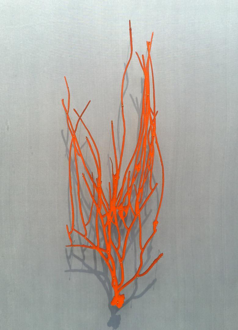 Sea Whip II - delicate lasercut image glazed and framed