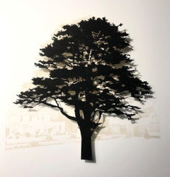 Southtrop Cedar - Mixed media tree: contemporary, framed & glazed