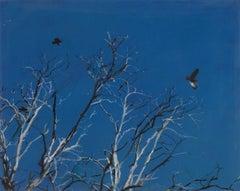 Tree, Bird, Moon, Sag Harbor, impressionist landscape painting