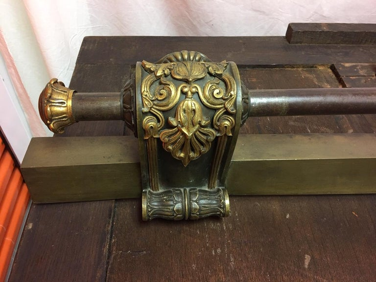 American Empire Style Fireplace Fender, 19th Century For Sale