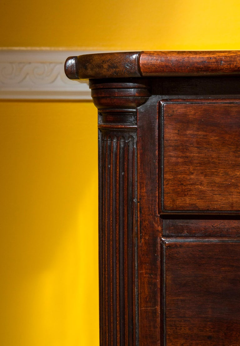 Classical Roman English 18th Century Small Georgian Mahogany Chest of Drawers For Sale