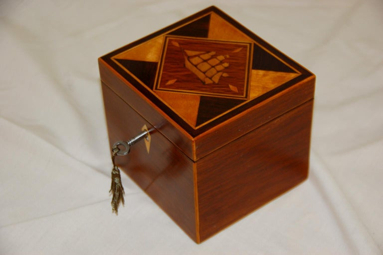 William IV English 19th Century Partridgewood Tea Caddy with Sailing Ship Inlay For Sale