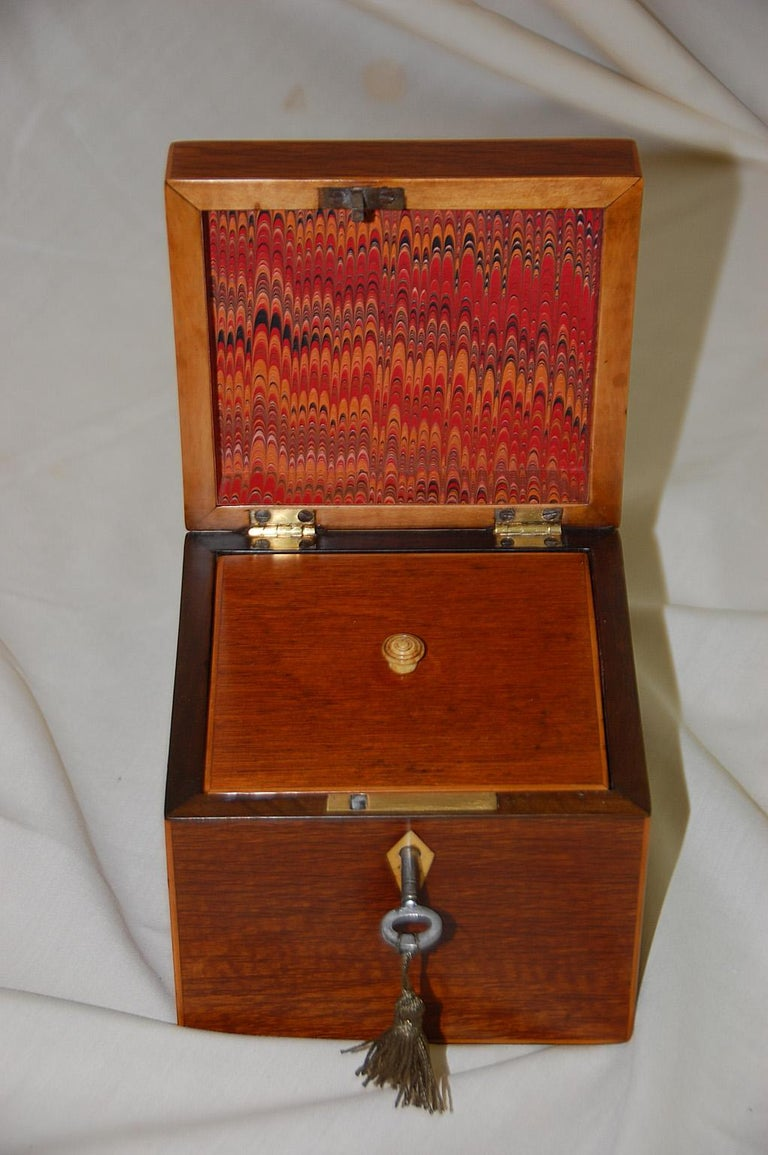 Boxwood English 19th Century Partridgewood Tea Caddy with Sailing Ship Inlay For Sale