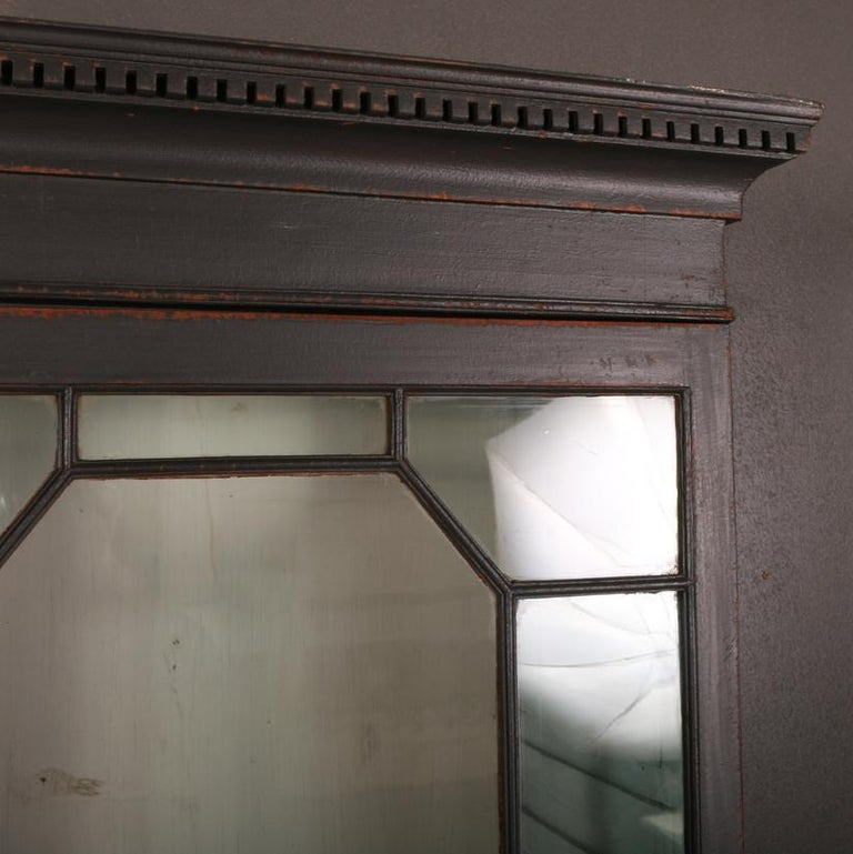 19th Century English Bookcase or Display Cupboard For Sale