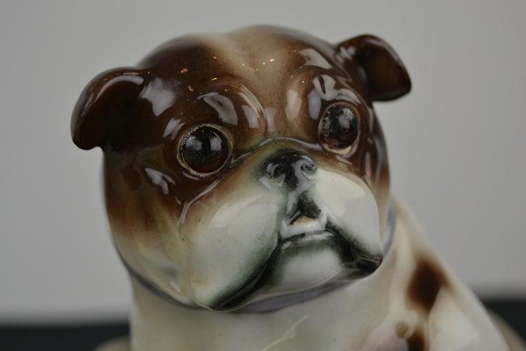 English Bulldog Perfume Lamp For Sale 10