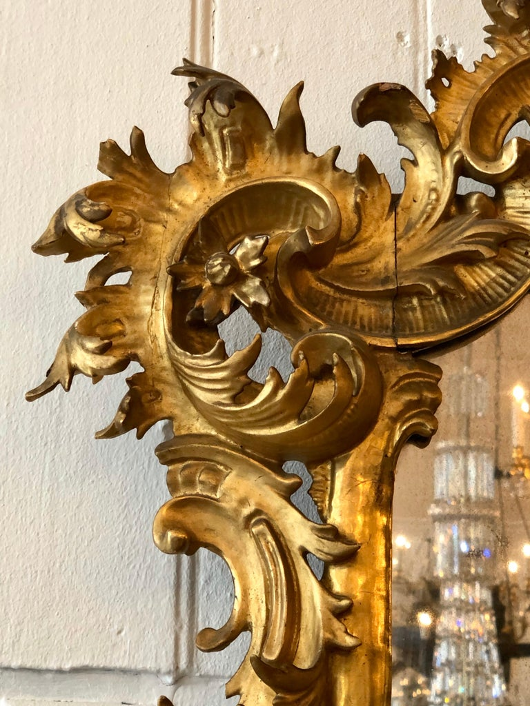 English Chippendale Carved Giltwood Mirror, 18th Century For Sale 9