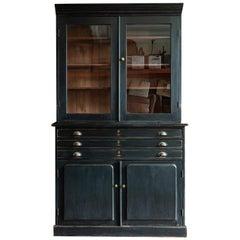 English Ebonised Glazed Dr's Cabinet