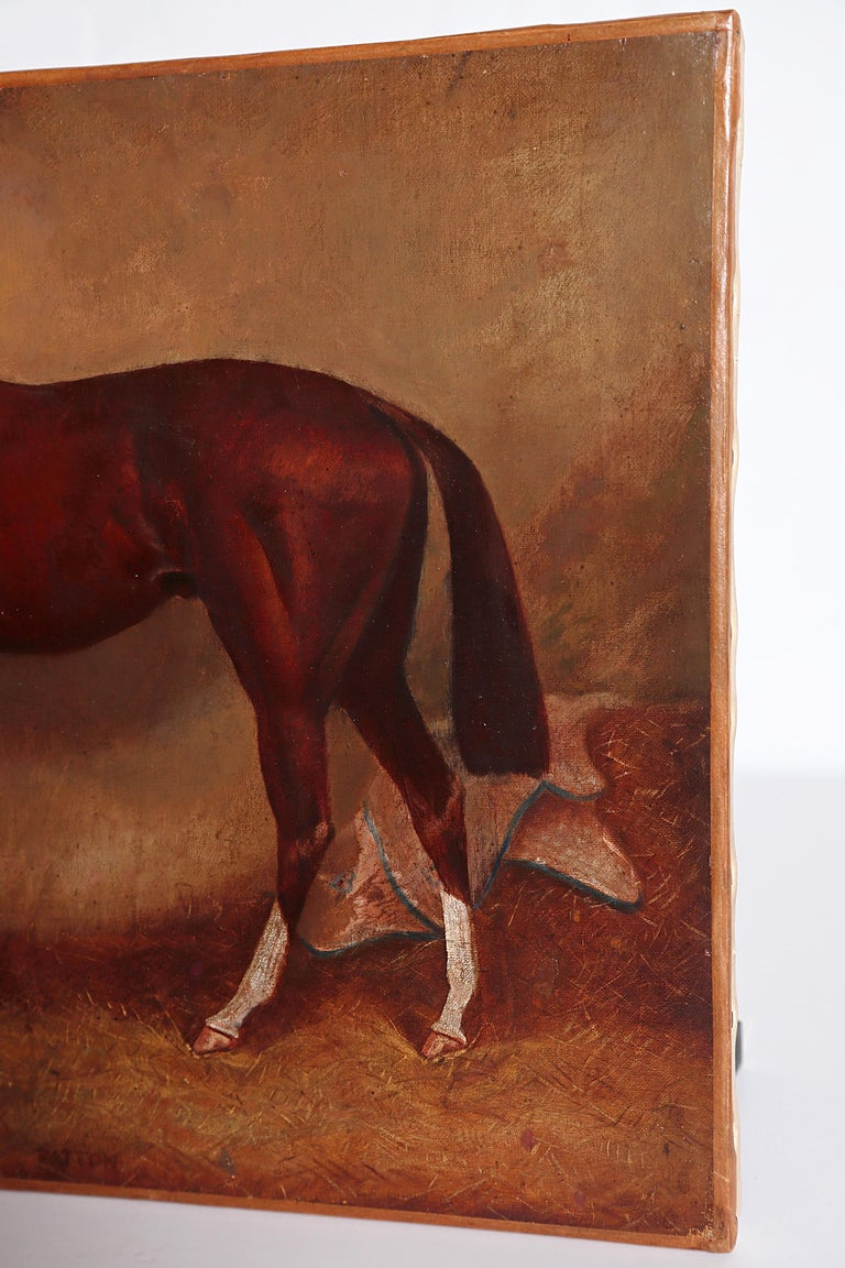 English Equine Portrait / Ratton by Charles Faulkner '1833-1892' Unframed For Sale 4