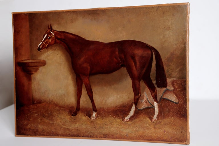 Hand-Painted English Equine Portrait / Ratton by Charles Faulkner '1833-1892' Unframed For Sale