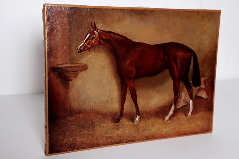 English Equine Portrait / Ratton by Charles Faulkner '1833-1892' Unframed In Good Condition For Sale In Dallas, TX
