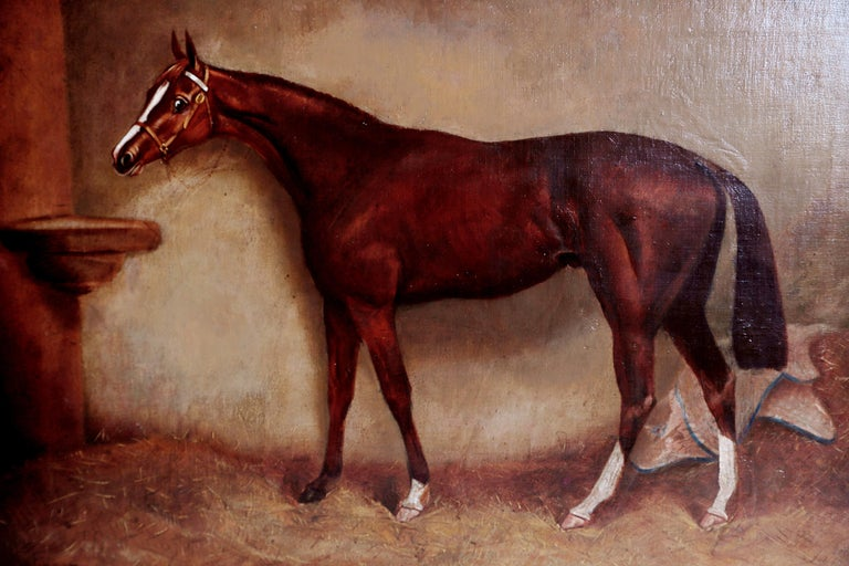 19th Century English Equine Portrait / Ratton by Charles Faulkner '1833-1892' Unframed For Sale