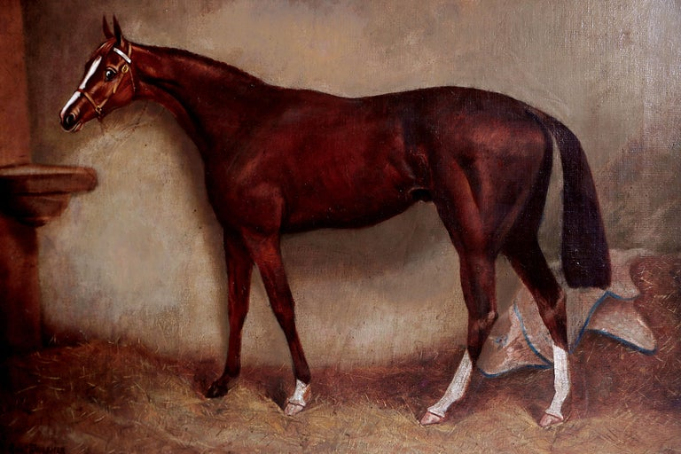 Canvas English Equine Portrait / Ratton by Charles Faulkner '1833-1892' Unframed For Sale
