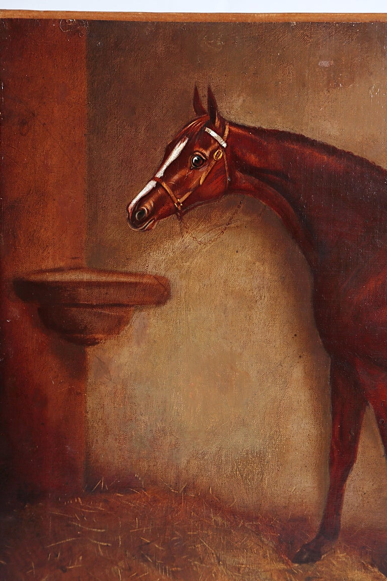 English Equine Portrait / Ratton by Charles Faulkner '1833-1892' Unframed For Sale 2
