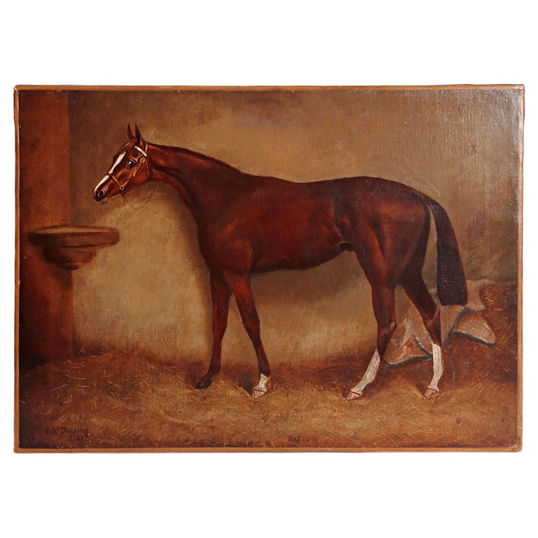 English Equine Portrait / Ratton by Charles Faulkner '1833-1892' Unframed For Sale