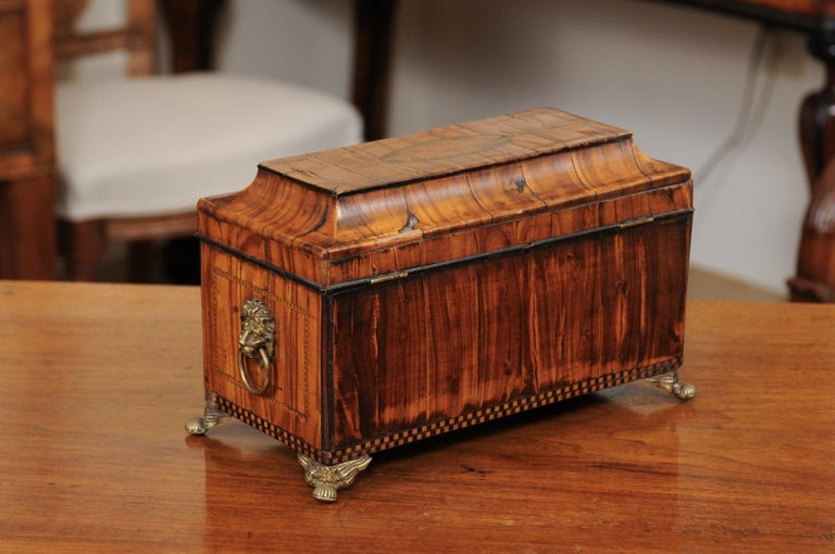English George III Olive Wood and Shell Inlaid Letter Box, Early 19th Century For Sale 6