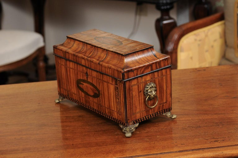 English George III Olive Wood and Shell Inlaid Letter Box, Early 19th Century For Sale 8