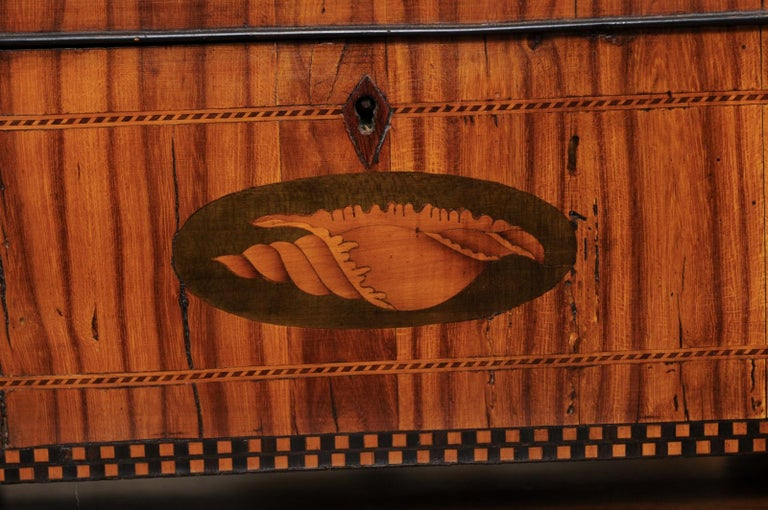 English George III Olive Wood and Shell Inlaid Letter Box, Early 19th Century For Sale 10