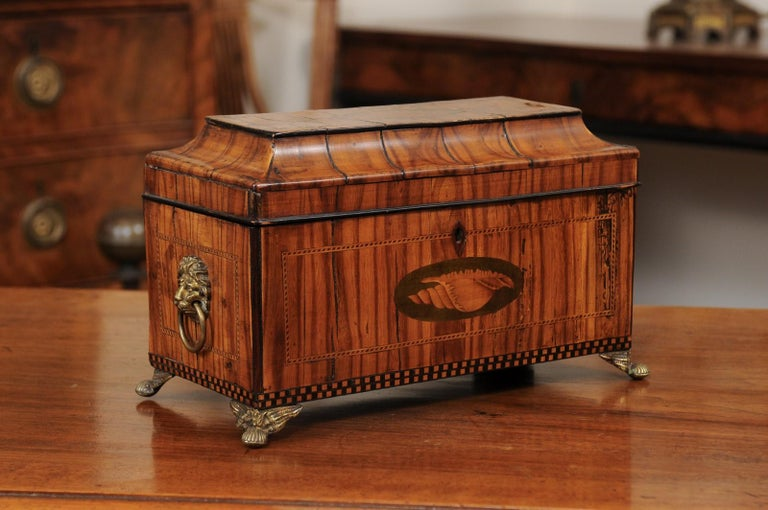 An early 19th century George III olive wood letter box featuring shell and parquetry inlay, lion head pulls on sides ending in brass feet.