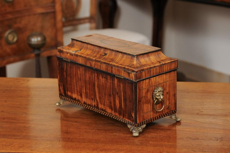 English George III Olive Wood and Shell Inlaid Letter Box, Early 19th Century For Sale 4