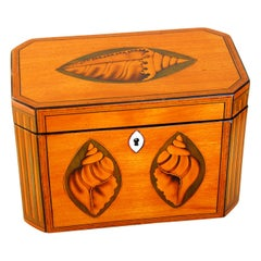English Georgian Double Tea Caddy with Boxwood Shell and Column Inlays