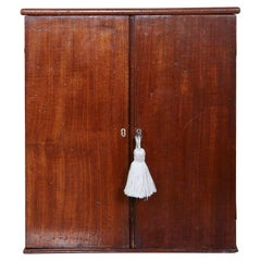 English Mahogany Collector's Cabinet / Drinks Table