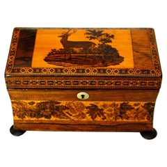 English Mid 19th Century Rosewood Tunbridge Inlaid Teacaddy with Deer and Fawn