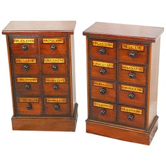 English Pair of Victorian Period Small Apothecary Cabinets of Eight Drawers Each