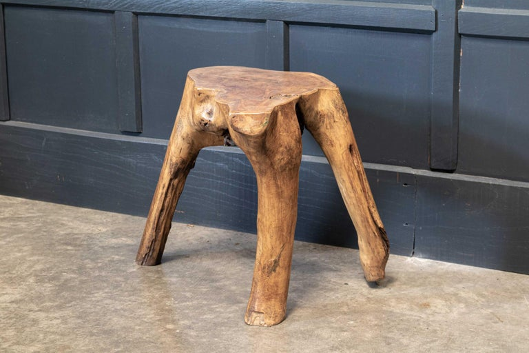English Pair Primitive Teak Root Side End Tables For Sale 1